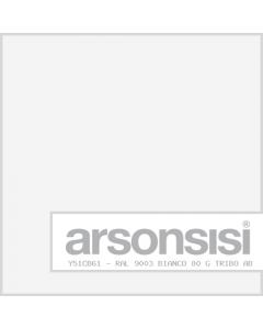 RAL 9003 BIANCO 80 G TRIBO AB DG
